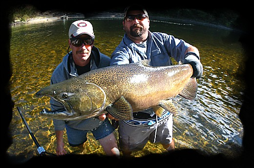 Muskegon Salmon, Michigan Fly Fishing Guide & Outfitter