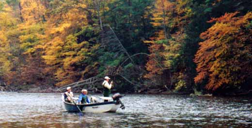 Muskegon Trout, Michigan Fly Fishing Guide & Outfitter