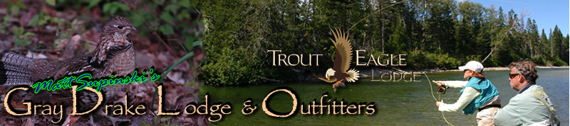 Gray Drake Outfitters - banner image